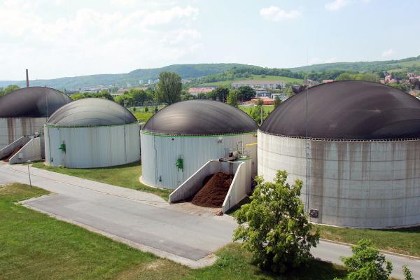 German industry seeks support for bioenergy innovations