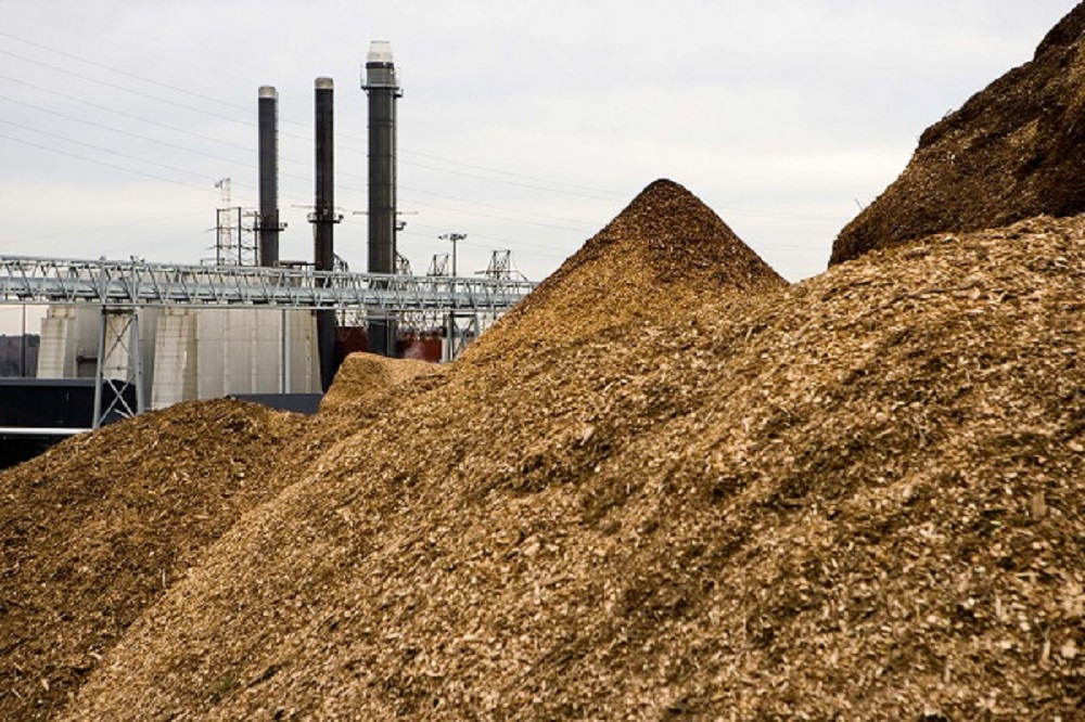 UK funds biomass-feedstock projects
