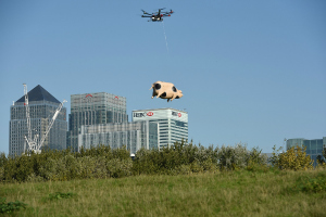 Orchard Pig drone delivery service