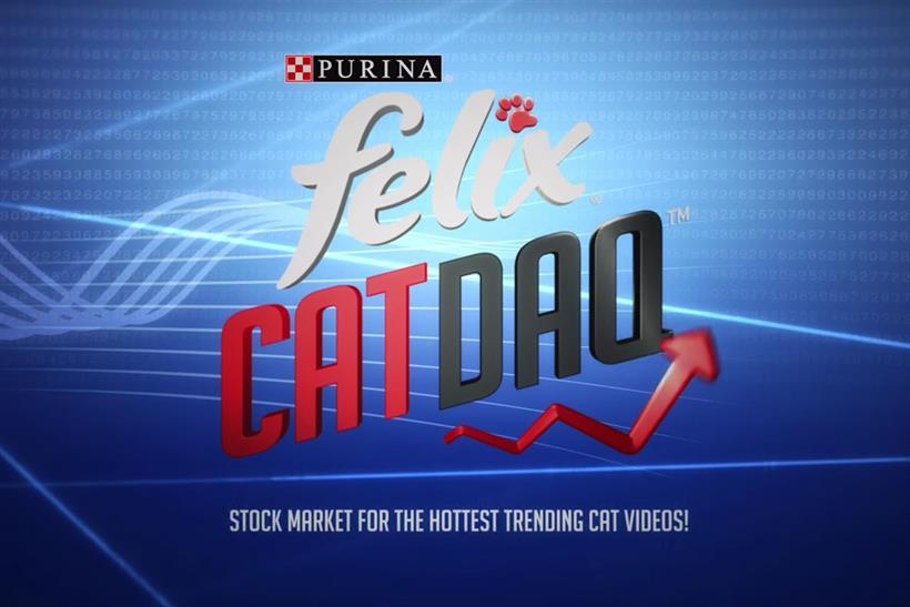 Felix Catdaq