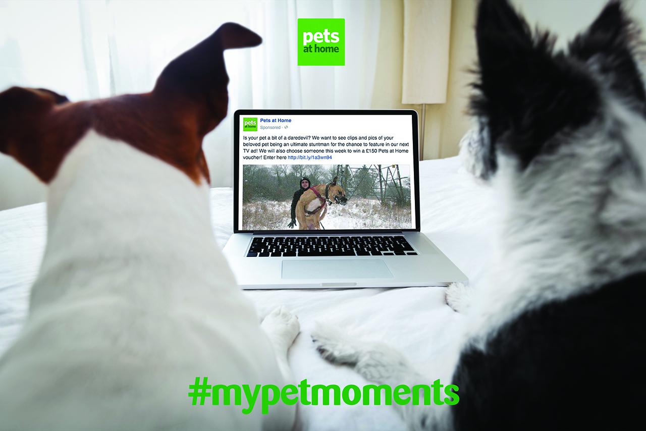 Pets at Home put user-generated content in its ads