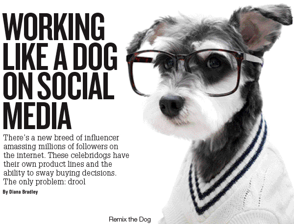 Working Like a Dog Social Media