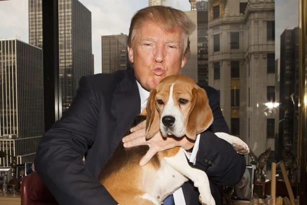 Trump: pouting with beagle, for some reason