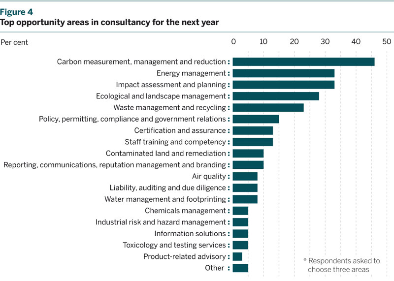 Figure 4: Top opportunity areas in consultancy for the next year