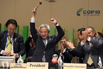 Japanese minister for environment and COP president Ryu Matsumoto, gavelling the meeting to a close. (Credit: Japanese government)