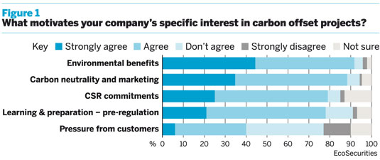 Companie's motivations for choosing specific carbon offset projects