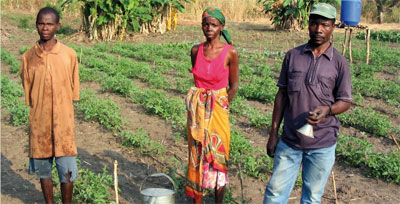 The Plan Vivo-registered Sofala Community Carbon project in Mozambique