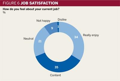 Figure 6: Job satisfaction