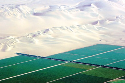 This asparagus farm in the Peruvian desert faces water supply risks (credit: Nick Hepworth, Water Witness International)