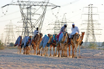 Countries in the Middle East, such as the United Arab Emirates, are seen as a big growth area for environmental assessment (credit: Caro/Alamy)