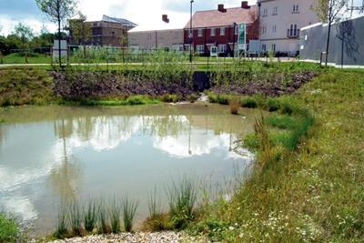 SuDS pond at Berewood housing development, Hampshire