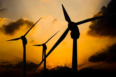 In 2014 investment in wind rose by 11%, while solar made up half of all investment