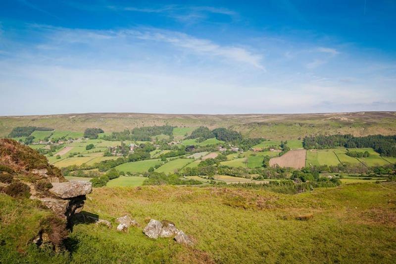 The North York Moors (photograph: Hartmut Albert/123RF)