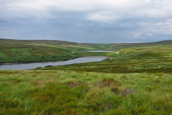 Walshaw Moor is in the South Pennine Moors special area of conservation. Photograph: Tim Green/Flickr