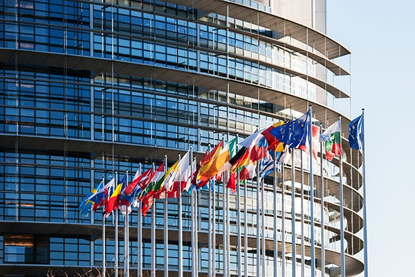The European Parliament approved the decision at its plenary session. Photograph: Adrian Hancu/123RF