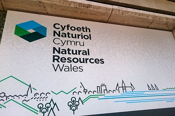 Natural Resources Wales has now been operating for over three years. Photograph: Isabella Kaminski