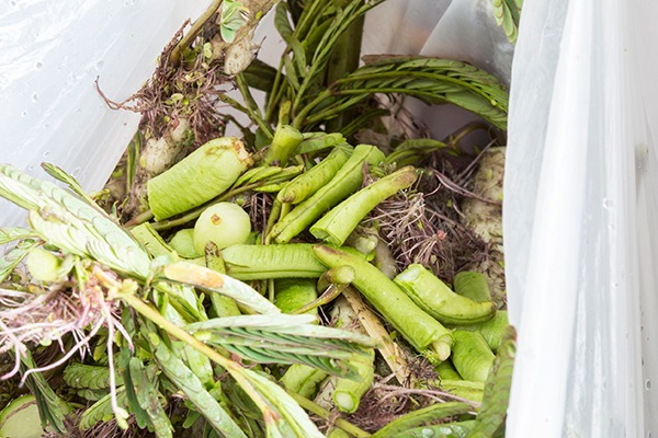 There was a 5.7% reduction in household food waste between 2009 and 2014. Photograph: Pitak Areekul/123RF