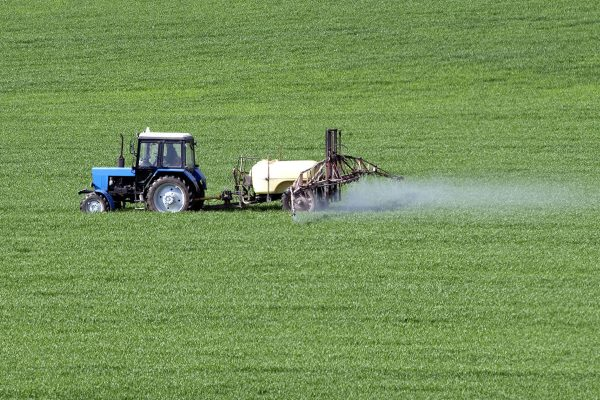 The criteria for endocrine disruptors will affect the regulation of pesticides. Photograph: Ihar Leichonak / 123RF