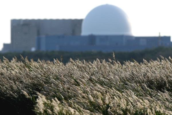 Sizewell nuclear power station. Photograph: Trevor Benbrook/123RF