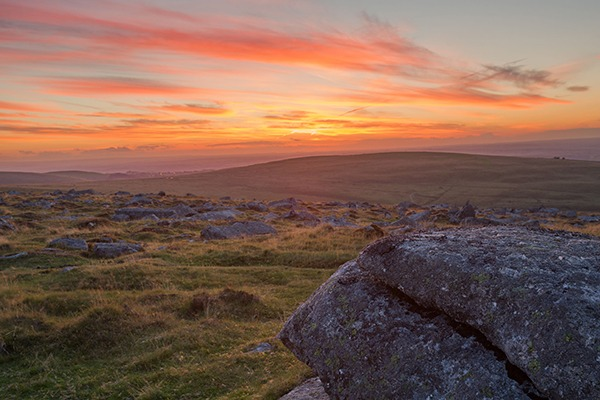 Dartmoor is home to a number of SSSIs. Photograph: Anna Curnow/123RF