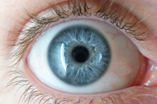 Household dust containing TDCPP could damage the cornea, research suggests. Photograph: 8thstar GFDL