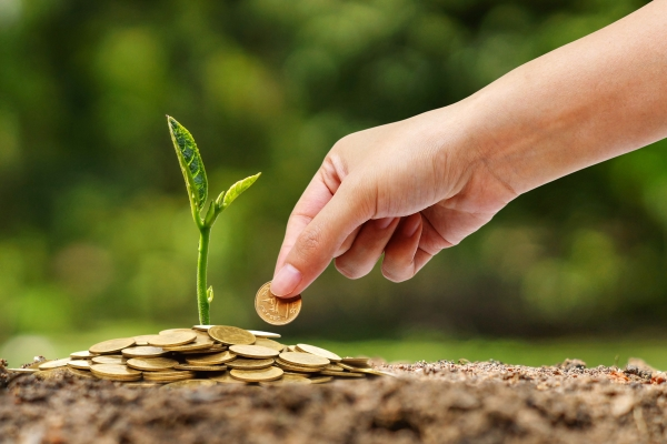 There is increasing attention on the role of finance in achieving green objectives. Photograph: 123RF