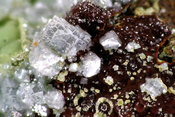 Otavite – a are form of cadmium carbonate. Photograph: Christian Rewitzer/Wikimedia Commons