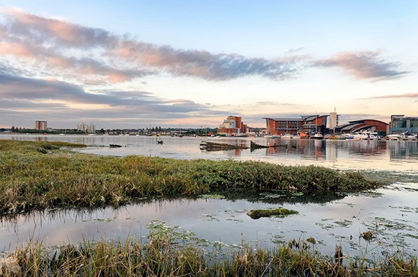 Salt marsh at Poole, Dorset. Photograph: Helen Hotson/123RF