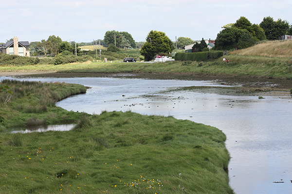 River Carrigs