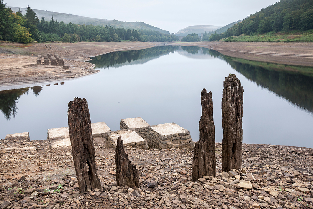 Policymakers to blame for UK's 'acute vulnerability to environmental breakdown'