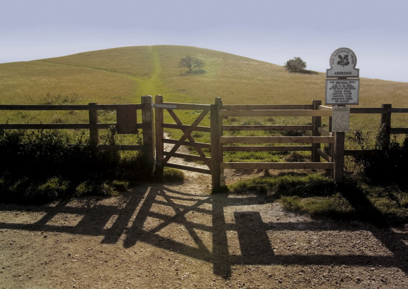 EXCLUSIVE: Hundreds more job losses feared at National Trust
