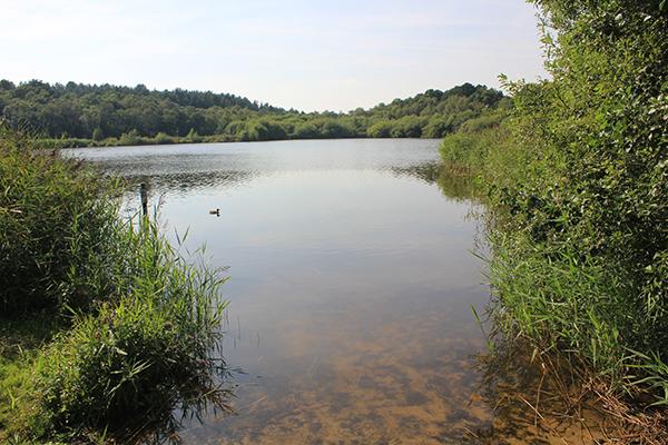 Hatchmere lake, Cheshire