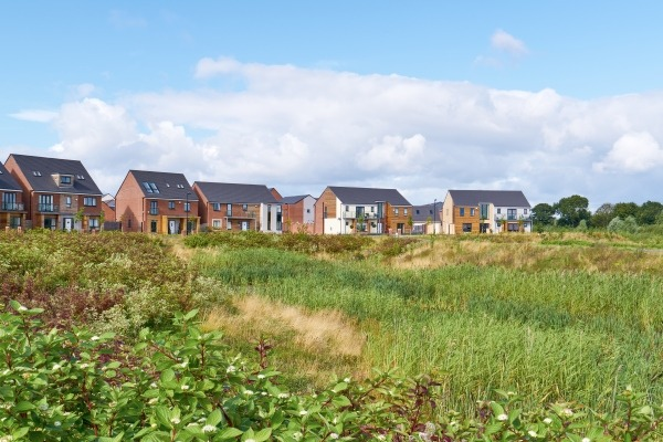 Houses by scrubland