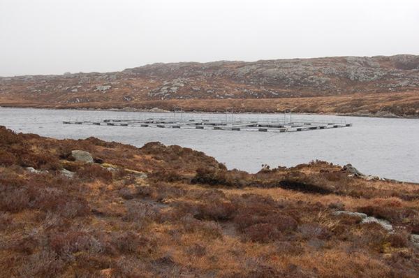 Loch Langabhat salmon farm