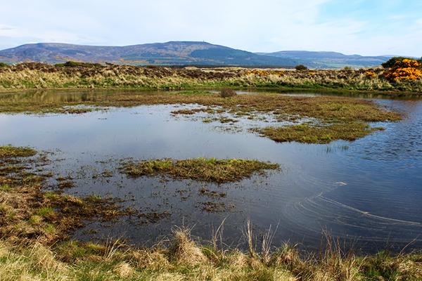 Lochan on Coul Links