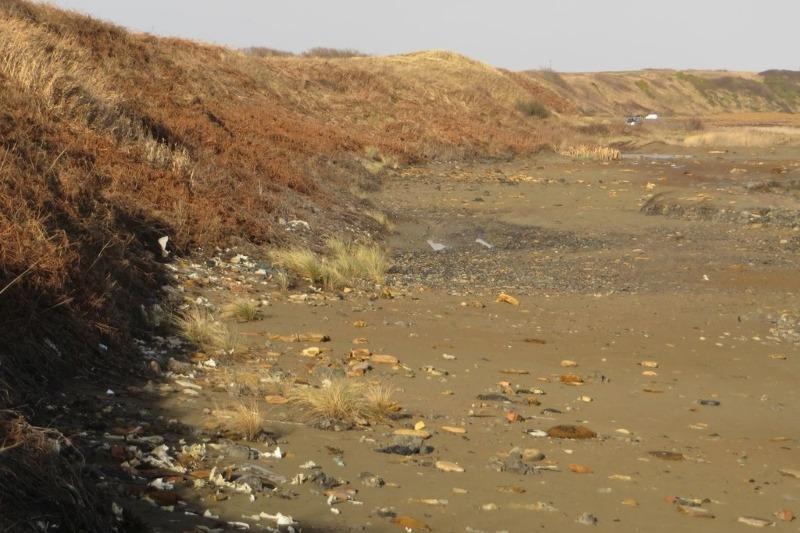 Rubbish strewn along Lynemouth beach