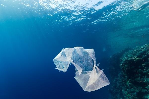 Marine plastic pollution