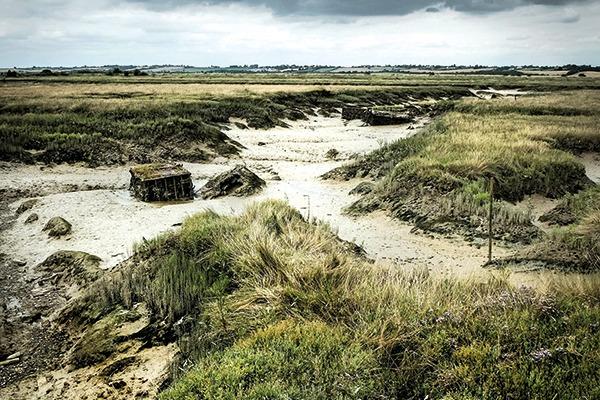 Wallasea Island, Kent
