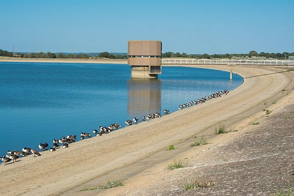 Arlington reservoir, East Sussex
