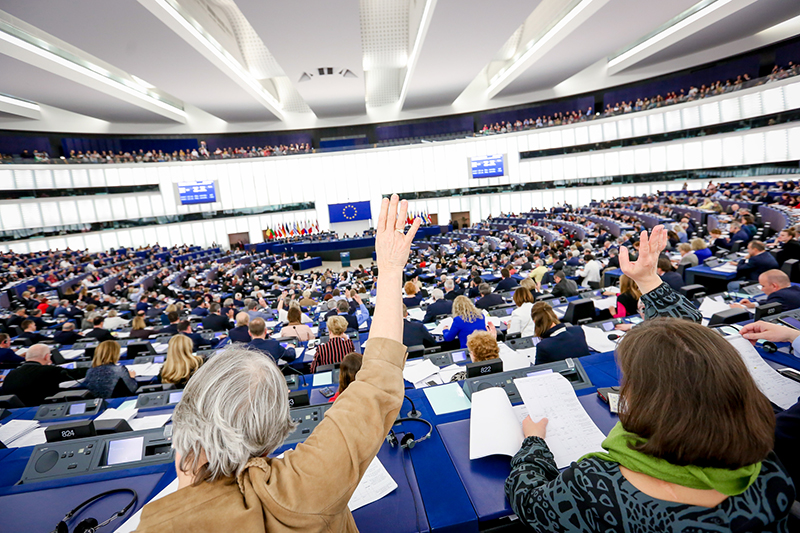 European elections: Who's who on environmental policy