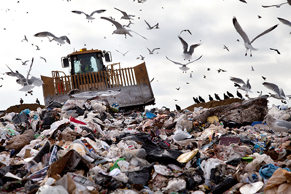 Scoop in landfill